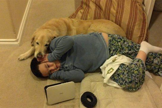 20 Φωτογραφίες που αποδεικνύουν ότι τα σκυλιά είναι Οικογένεια!
