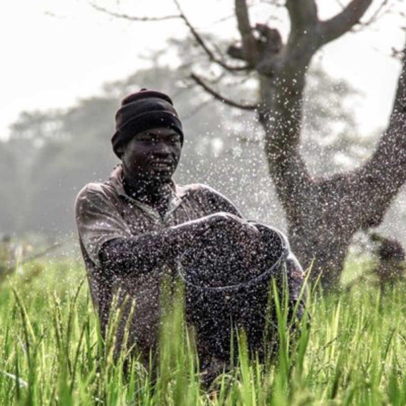 Οι νικήτριες φωτογραφίες του National Geographic για το 2017