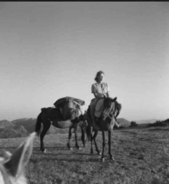 Τζόαν Λι Φέρμορ : η Ελλάδα της καρδιάς της στο Μουσείο Μπενάκη