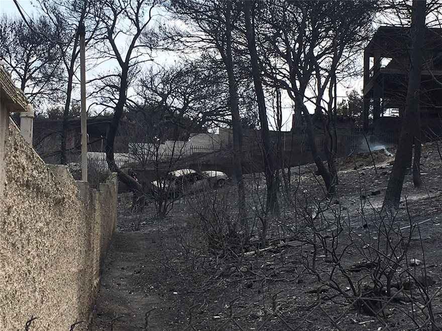 , Φωτιά στην Αττική: Άλλοι 14 νεκροί – Ξεπέρασαν τους 60 !!!