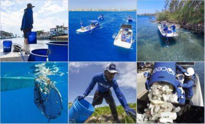 , Ρύπανση από πλαστικά σε ακτές και θάλασσες