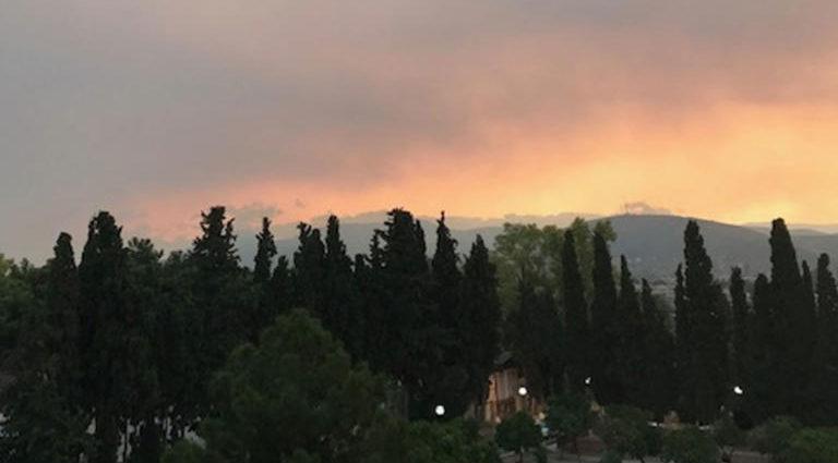 , Φωτιά Εύβοια: Καίγεται δάσος Natura! Σε ετοιμότητα να φύγουν οι κάτοικοι