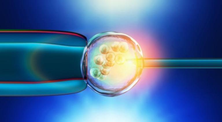 , Νέα επιστημονική ανακάλυψη ανοίγει τον δρόμο για την εύκολη επιλογή του φύλου του μωρού στην εξωσωματική